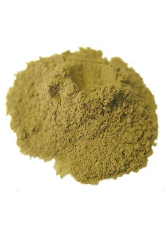 Фермент Протосубтилин, 100 г